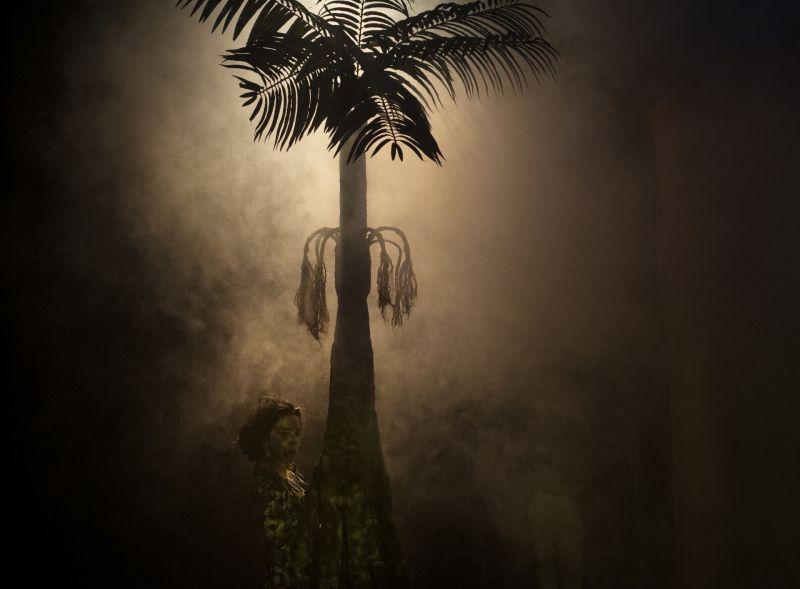 7_The_Moon_Is_In_The_Amazon_Photographer_Javier_Hernandez.jpg