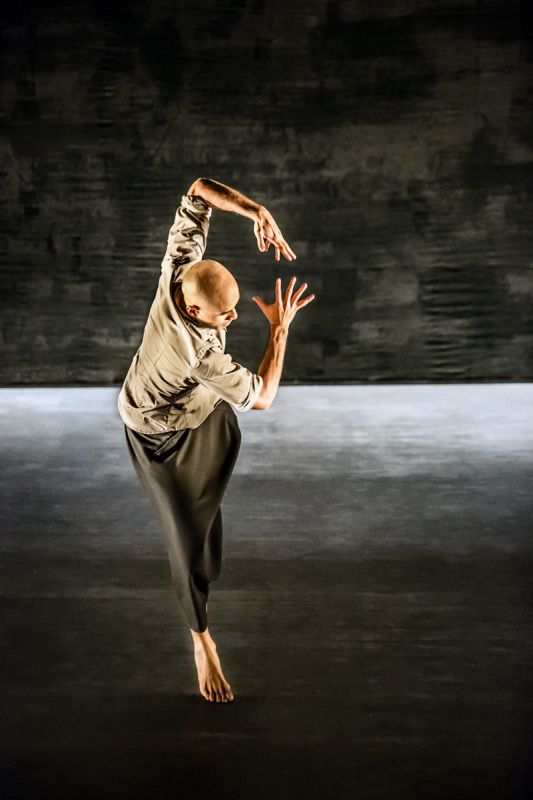 Chotto Desh - 8 ( dancer Dennis Alamanos ).jpg