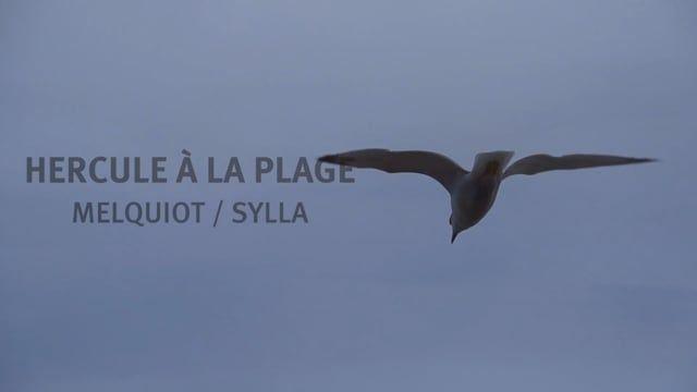 HERCULE À LA PLAGE - teaser - Avignon