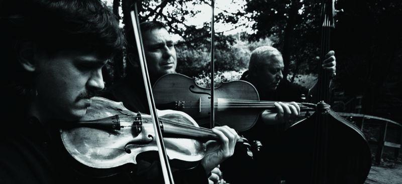 Tcha Limberger - 4 (Kalotaszeg Trio).jpg